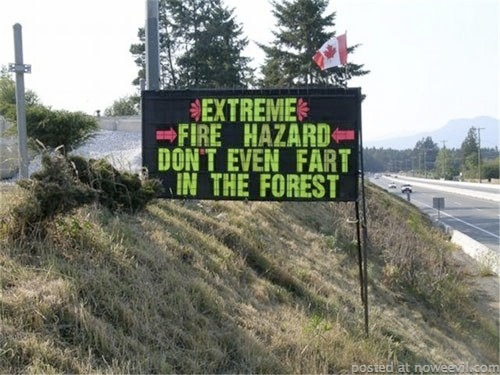 stupid sign 6