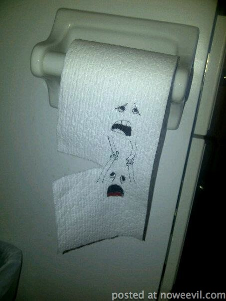 toilet paper picture