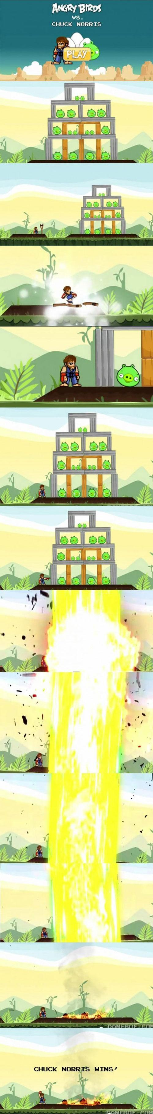 angry birds vs chuck norris
