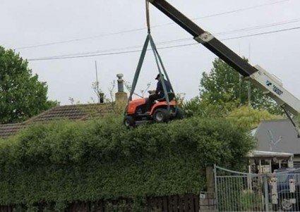 crane mowing