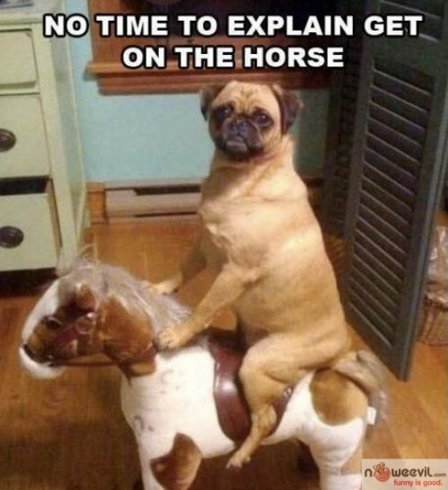 get on the horse