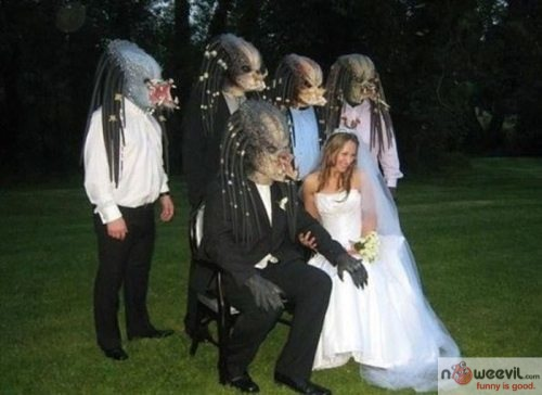 predator wedding