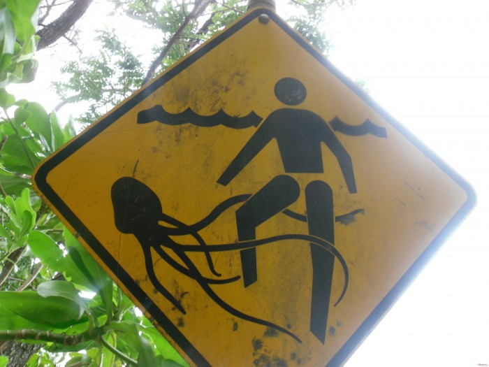 scary octopus sign