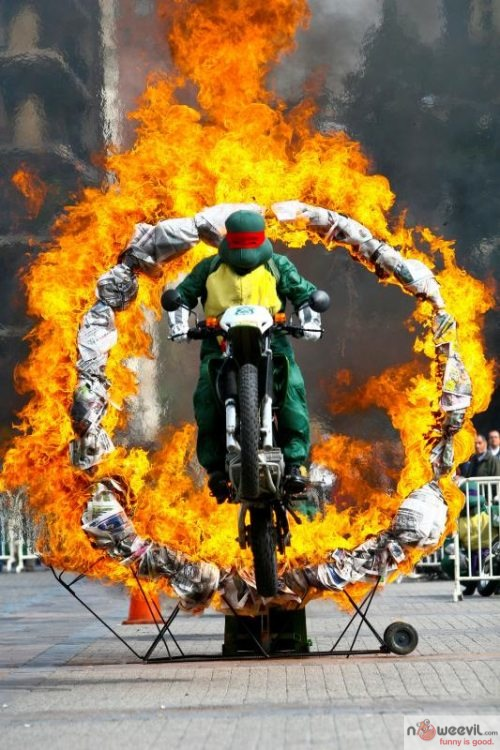 teenage mutant ninja turtel fire