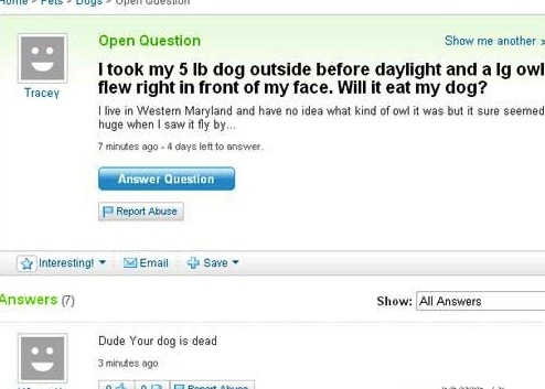 yahoo answers 2
