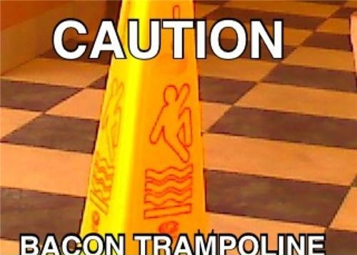 bacon trampoline