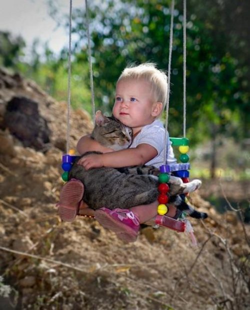 kid cat swing