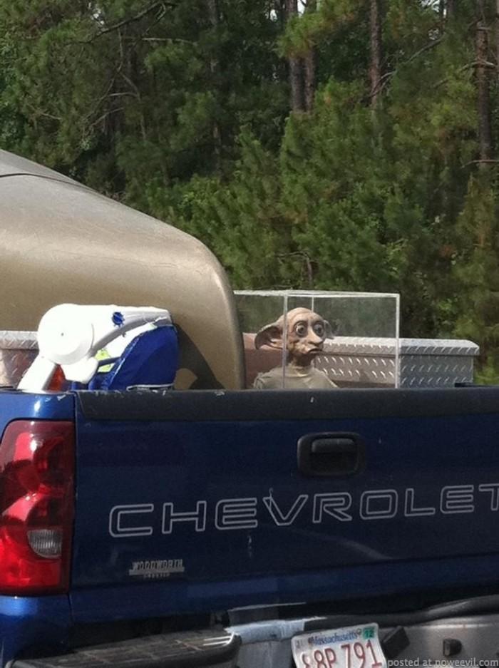 alien in back of truck