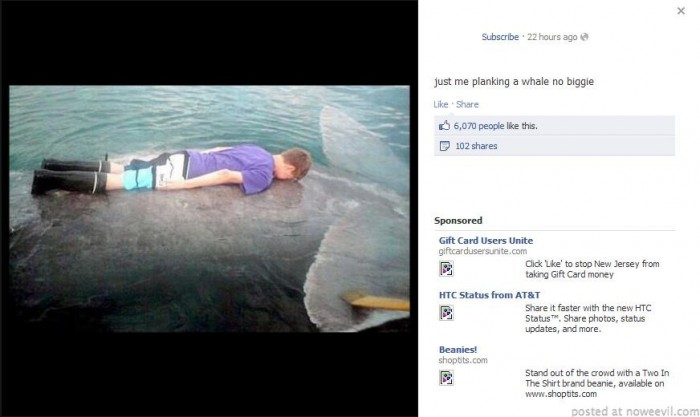 planking on a whale
