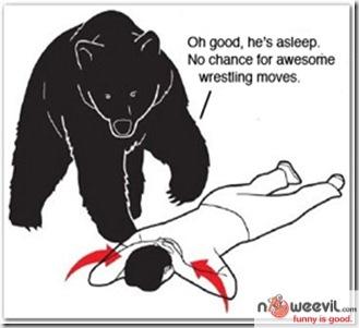 play dead with bear