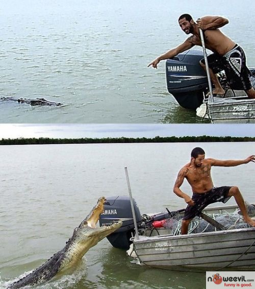 tough guy and croc
