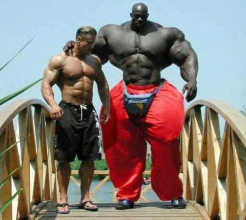 two bodybuilders