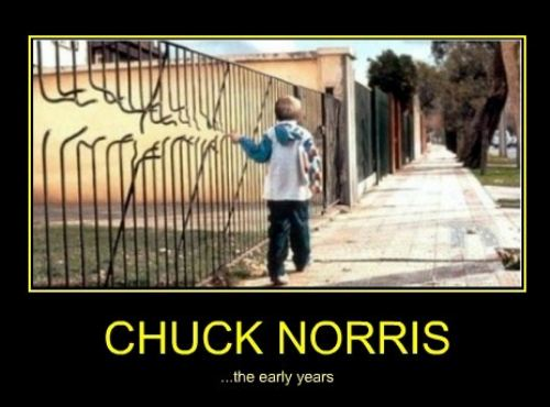 chuck norris early years