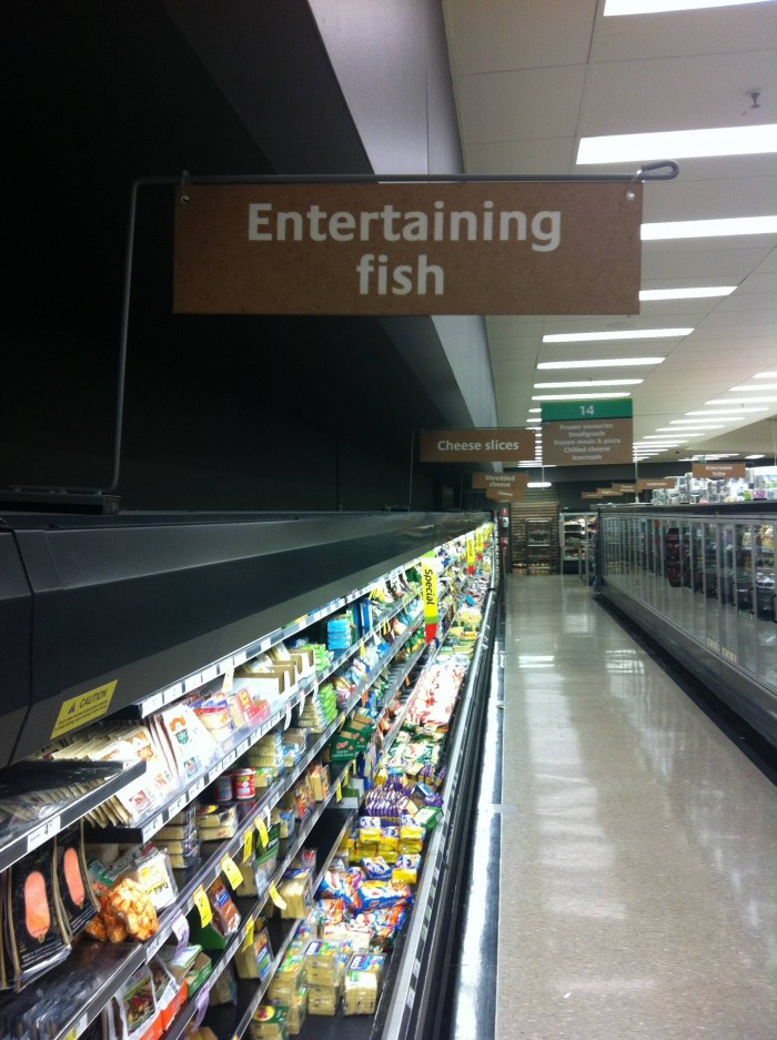 entertaining fish