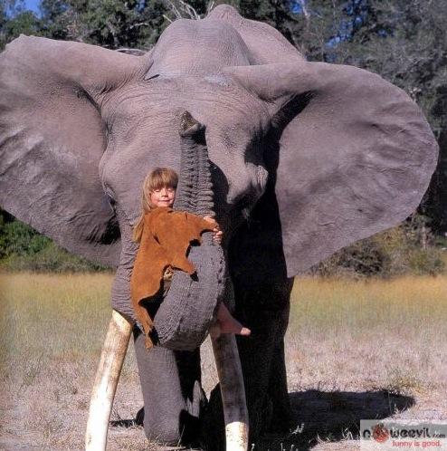 kid hugging elephant trunk