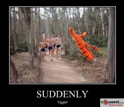 suddenly tiger