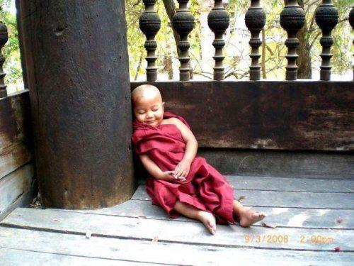 baby monk