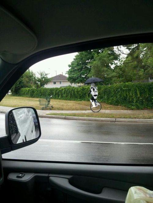 storm trooper uni