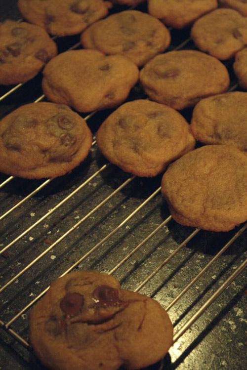troll cookie